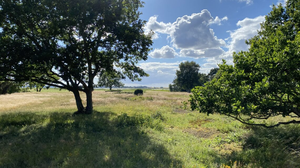 Ulvshale, Møn. 9 km.
