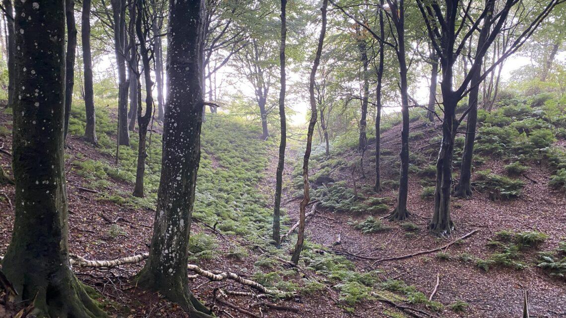 Mors: Legind Bjerge. 17 km.
